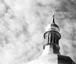 Ortodoxie publica